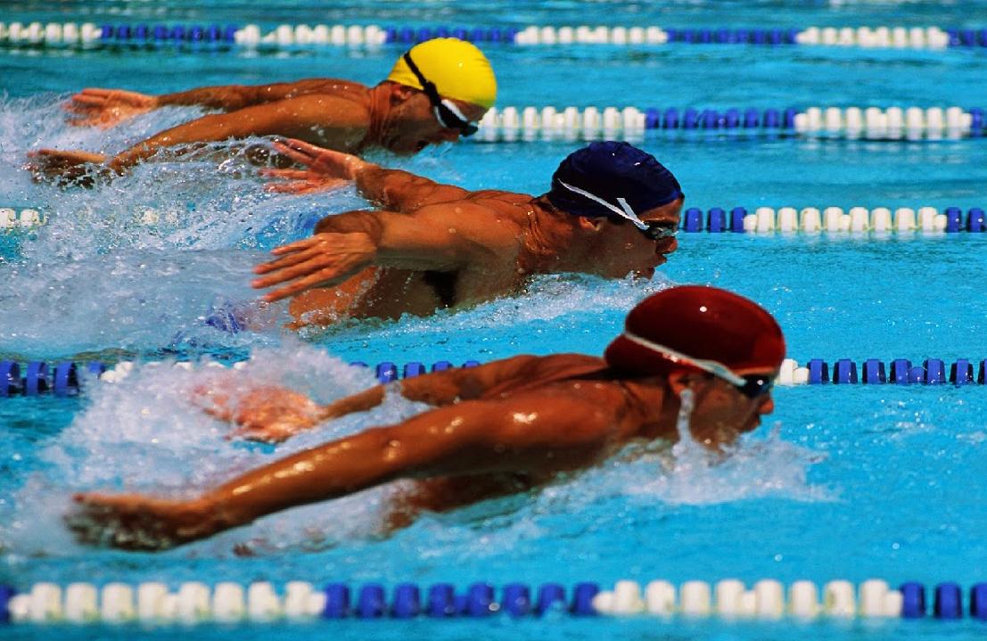 Cualidades en el ba ador de competici n for Planos de piletas de natacion