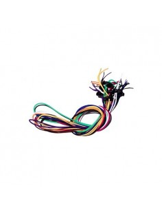 Cordón elástico  multicolor de recambio de la marca Jaked